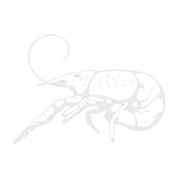 Youth Tossed Crawfish Black & Gold Neck Gaiter